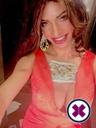Meet the beautiful Selina TS in Bristol  with just one phone call