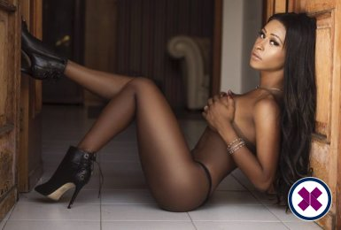 TS Soraya is a sexy Brazilian Escort in London