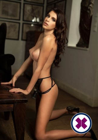 Anna is a hot and horny Italian Escort from Amsterdam