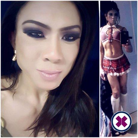 Johanna TS er en supersexy Thai Escort i Westminster