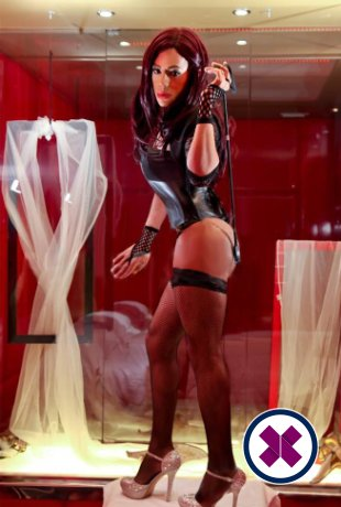 You will be in heaven when you meet TS Barbarita XXL, one of the massage providers in Oslo