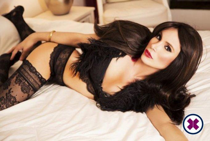 TS Annita XXL is a sexy Brazilian Escort in Westminster
