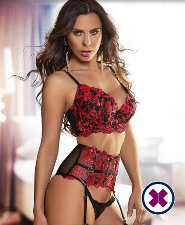 Liana is a hot and horny Brazilian Escort from Stockholm
