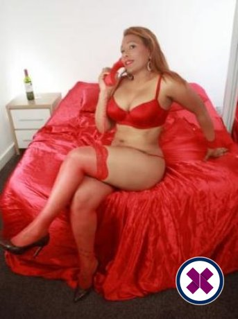 Meet Stunning Roxy  in Newcastle right now!