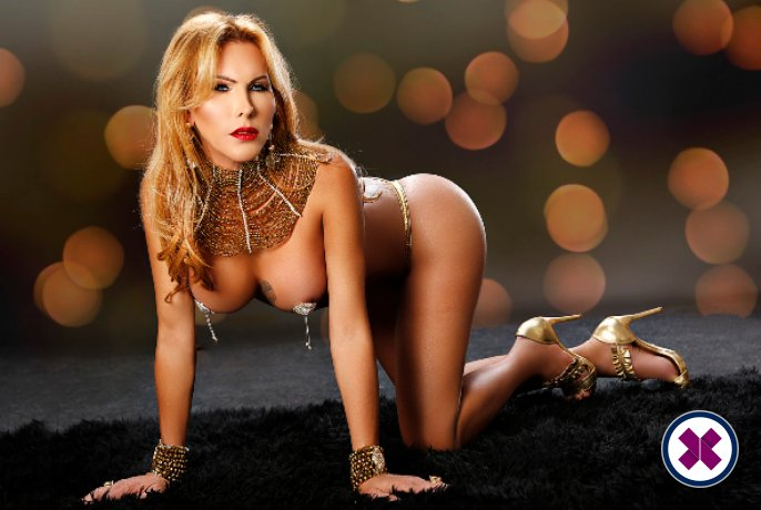 TS Katherina is one of the best massage providers in Düsseldorf. Book a meeting today