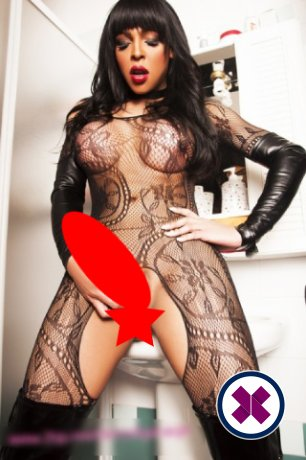 TS Nicoly is a top quality Brazilian Escort in Leeds