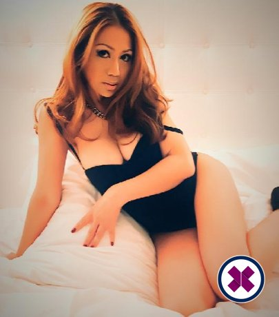 Delicious Massage TS is one of the incredible massage providers in Amsterdam. Go and make that booking right now