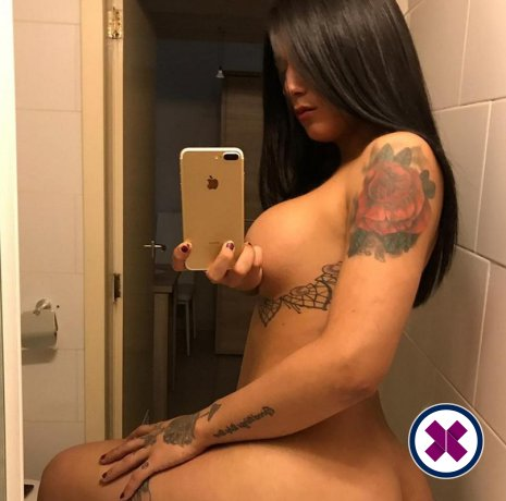 Sofia Massage TS is one of the much loved massage providers in Rotterdam. Ring up and make a booking right away.