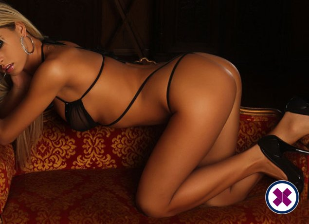 Nina is a sexy Slovak Escort in Westminster