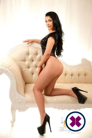 Greta is a hot and horny American Escort from Westminster