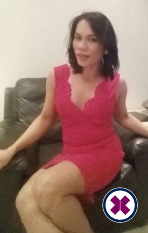 Foxy's Naughty Massage TS is one of the incredible massage providers in Sheffield. Go and make that booking right now